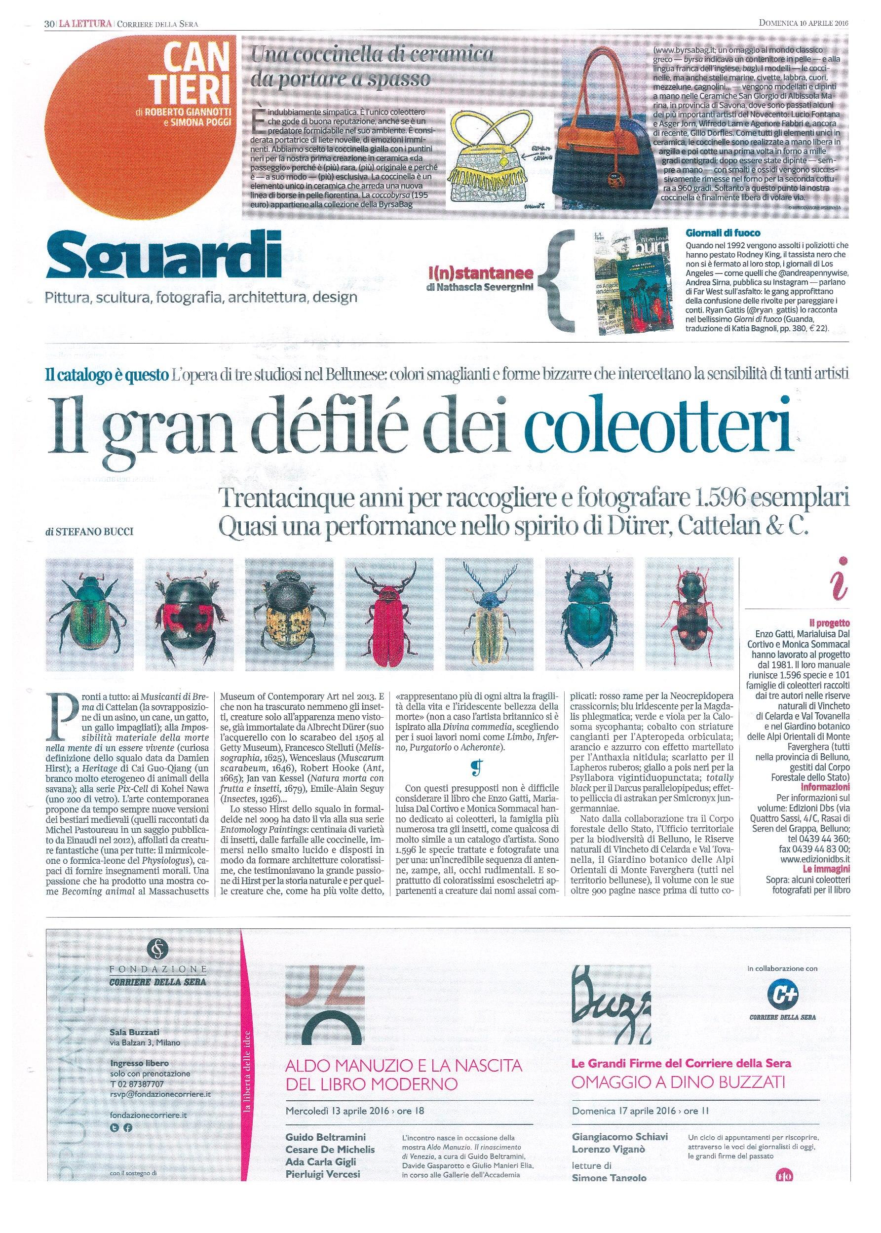 Corriere pagine 1 Coleotteri_R
