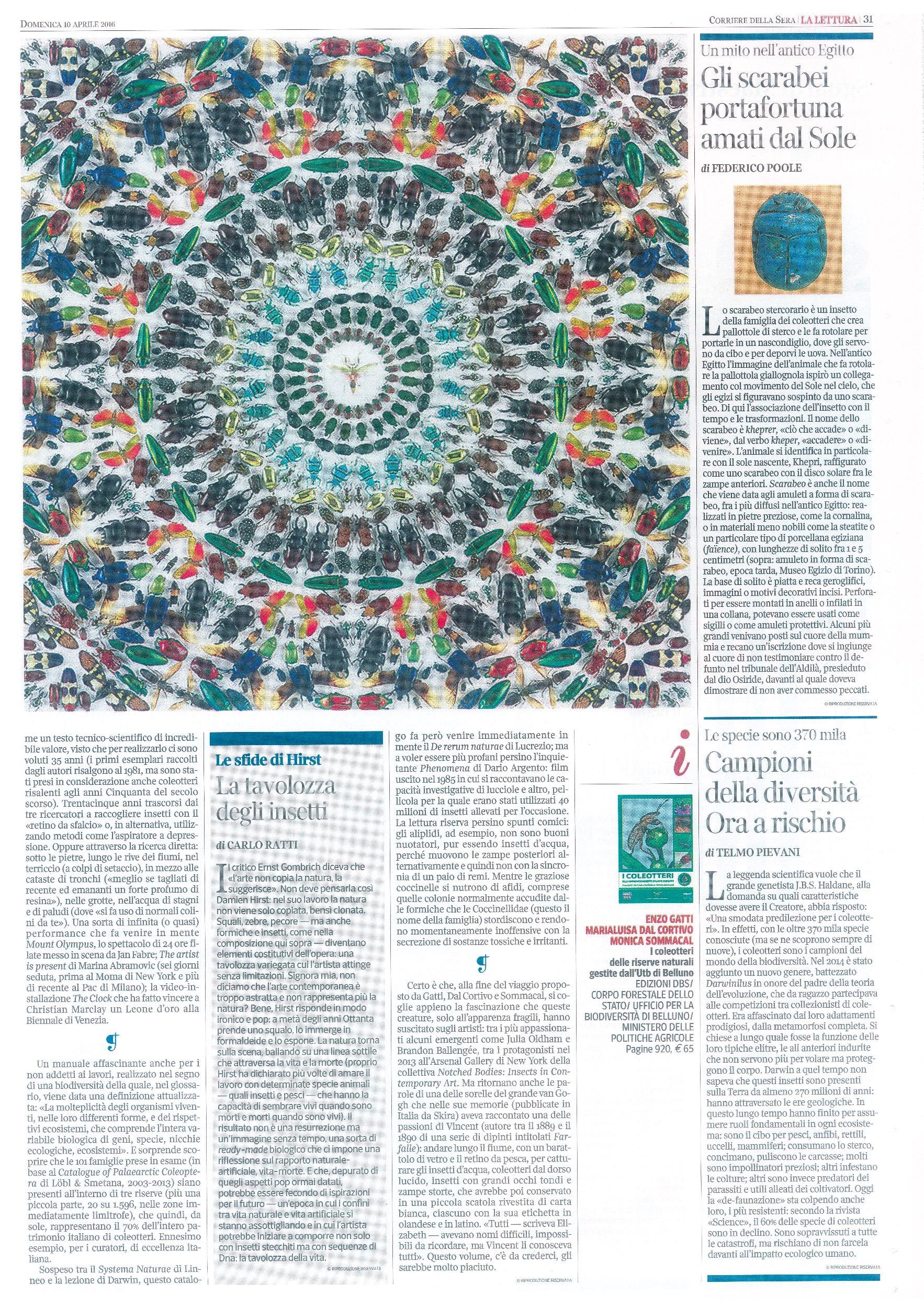 Corriere pagine 2 Coleotteri_R