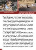Dolomiti a sei zampe Edizioni DBS  p. 157 04-1626
