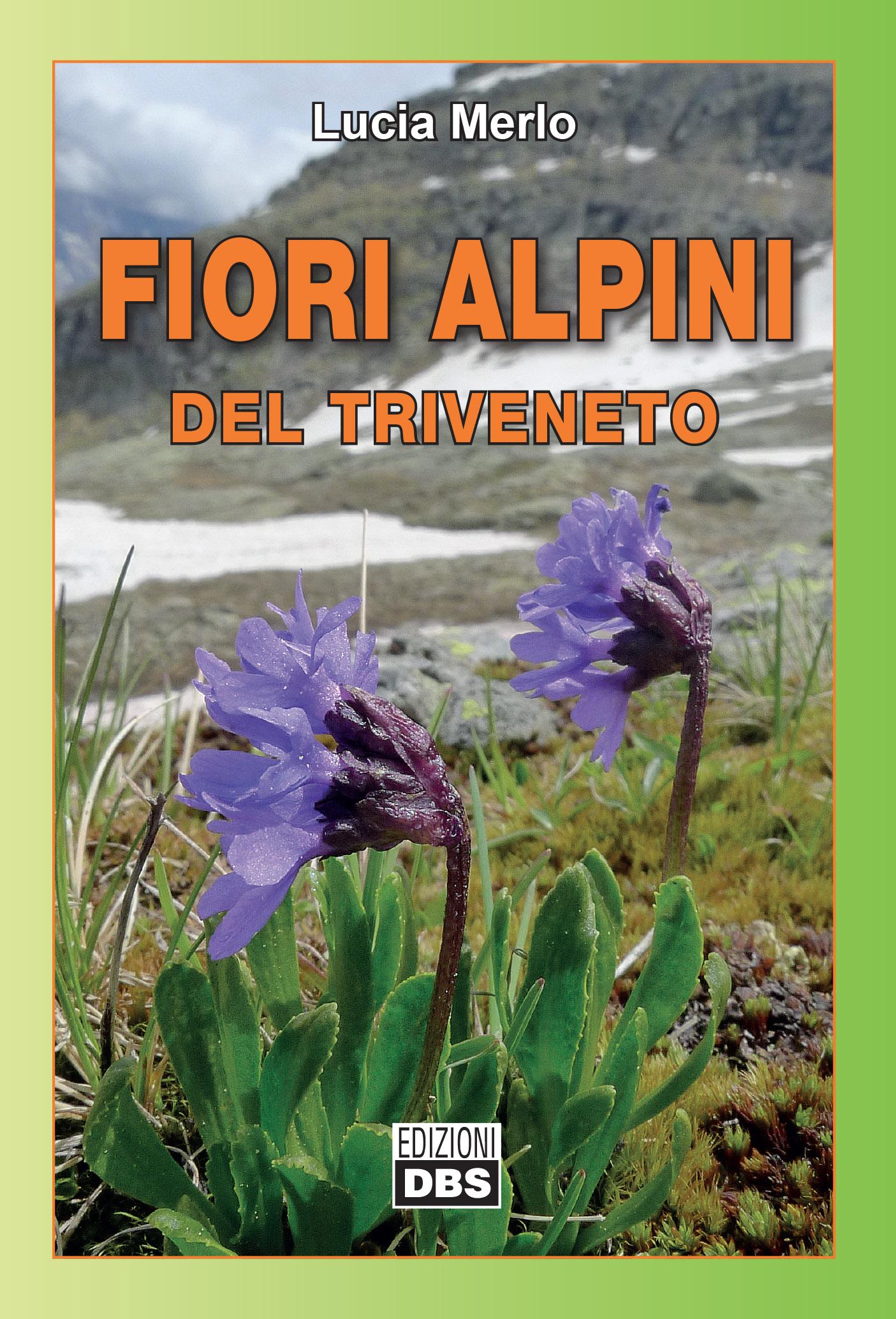 Fiori 2017 Veneto.Fiori Alpini Del Triveneto Fiori Alpini Di Veneto Trentino Alto