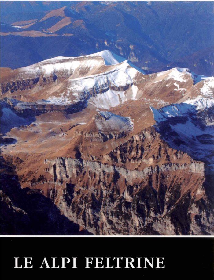 Il libro è la ristampa anastaticadella fondamentale opera di Giorgio Dal Piaz edita nel 1907. Edizione cartonata con sovracoperta a colori, pubblicata in collaborazionecon l'Istituto Veneto di Scienza , Lettere e Arti.