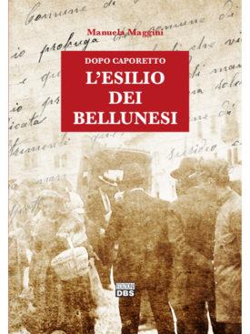 Novembre 1917: oltre 31.000 cittadini della Provincia di Belluno, di cui circa 6.000 del Comune di Belluno, sono costretti ad abbandonare le loro case sotto l'incalzare dell'esercito austro-tedesco. Una pagina dimenticata di storia che torna finalmente a rivivere attraverso le lettere inedite inviate dagli esuli bellunesi al loro sindaco Bortolo De Col Tana, commissario prefettizio del ricostituito Comune di Belluno nella sede extraterritoriale di Pistoia.